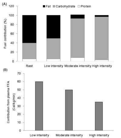 Fat usage exercise intensity