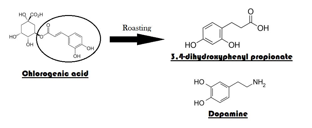Dopamine similarity_NS